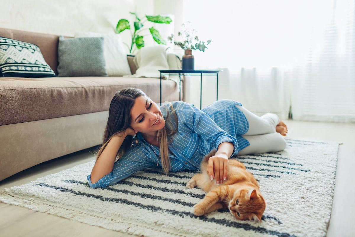 Teppiche und Haustiere