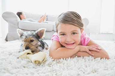 Wann ist eine Teppichreinigung sinnvoll